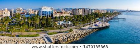 gris · Chipre · mapa · administrativo · capitales · ordenador - foto stock © vectorminator