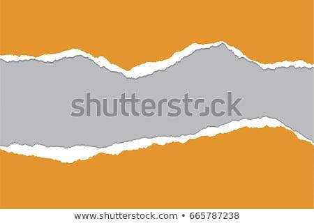 色 · 引き裂かれた紙 · 勾配 · 孤立した · 白 - ストックフォト © adamson