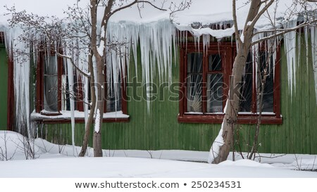 snowdrift and big icicle on wooden roof stock photo © bsani