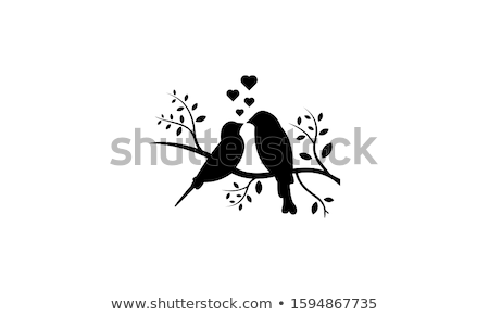 bird couple in love for valentine card  Stock photo © creative_stock