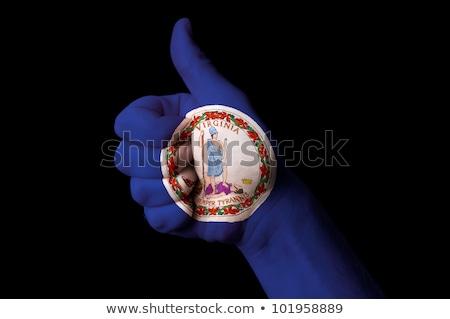 Virginia bandera pulgar hasta gesto excelencia Foto stock © vepar5