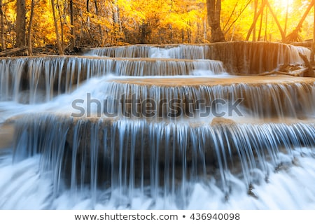Schönen Wasserfall Kaskade fallen Laub Baum Stock foto © Catuncia