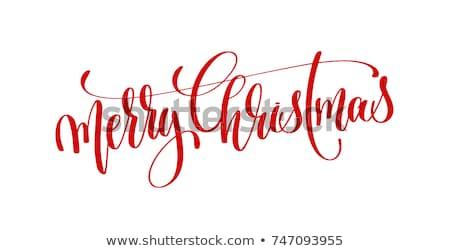 Napis wesoły christmas kobiet Święty mikołaj kostium Zdjęcia stock © maros_b