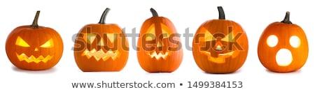 Vijf verschillend halloween pompoenen hout Stockfoto © Elmiko
