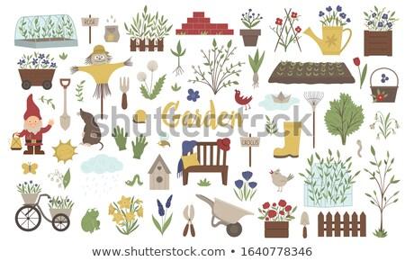 Big collection of garden benches.  Vector illustration Stock photo © leonido