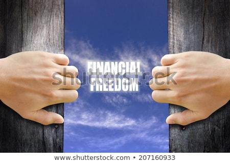 Finansowych wolności autostrady kierunkowskaz ceny drogowego Zdjęcia stock © tashatuvango