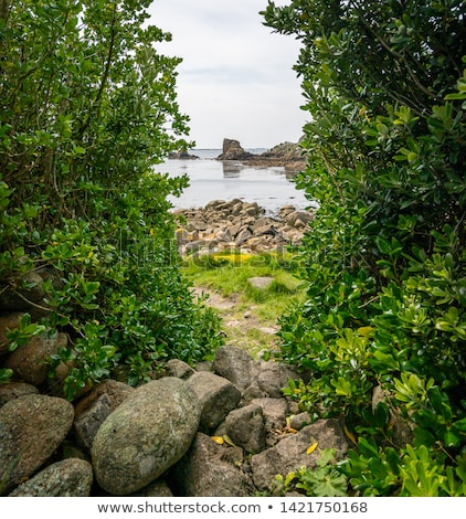 St. Agnes and Western Rocks, Isles of Scilly, Cornwall UK. Stock photo © latent