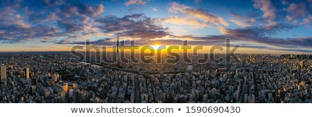 Aerial view of Tokyo downtown Stock photo © vichie81