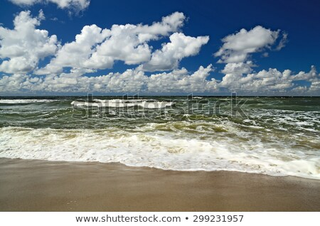 Wild weather storm clouds ocean beach Stock photo © roboriginal