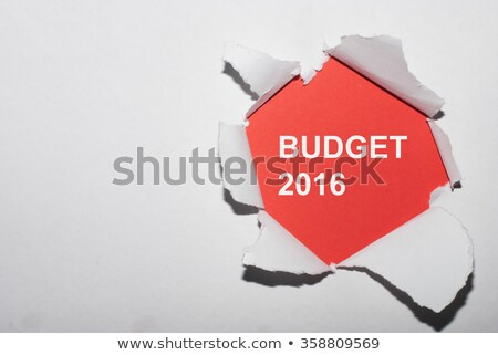 budget · jaar · 2016 · gescheurd · papier · tekst · achter - stockfoto © ivelin