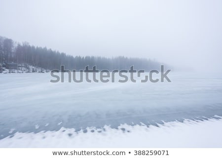 Thick fog at frozen lake landscape Stock photo © Juhku