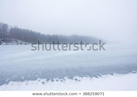 thick fog at frozen lake landscape stock photo © juhku