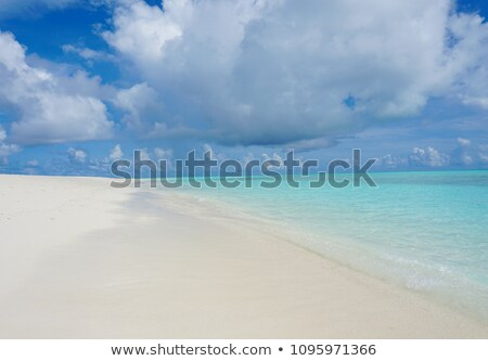 Ocean scene with crabs on the beach Stock photo © bluering