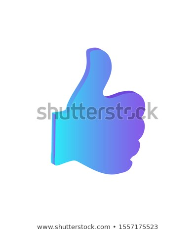 Ok Message Flat Raster Icon Stock photo © ahasoft