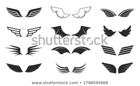 aviator text with angel bird wing Stock photo © vector1st