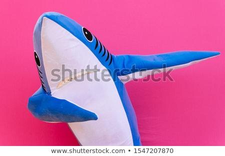 cute · rekina · ilustracja · cartoon · zwierząt · pływanie - zdjęcia stock © rogistok