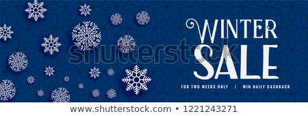winter sale snowflakes bacnner design Stock photo © SArts