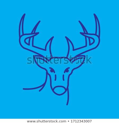 Geyik ikon vektör siyah logo Stok fotoğraf © blaskorizov
