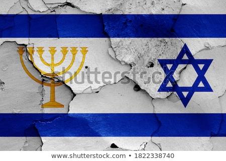 Zwei Häuser Fahnen Vereinigte Staaten Israel isoliert Stock foto © MikhailMishchenko