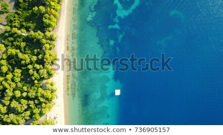 Aerial view of boats on tropical sea coast with sandy beach stock photo © denbelitsky