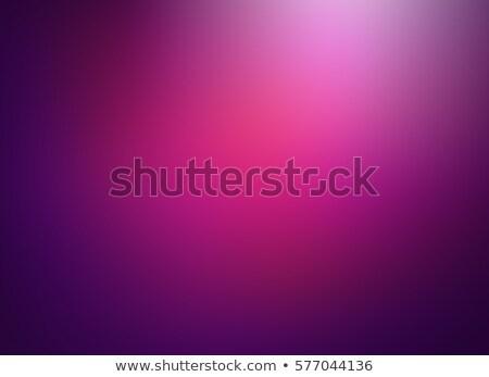 фиолетовый · градиент · семьи · лист - Сток-фото © adamson