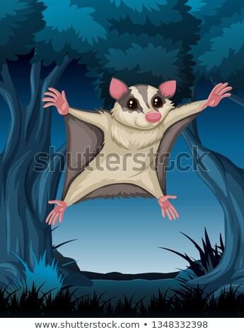 bat jumping at you stock photo © bluering