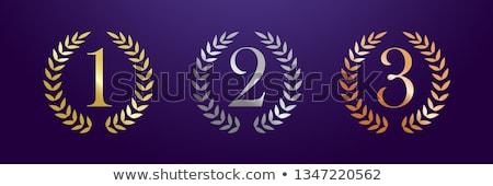 Keret bronz babér szett illusztráció körkörös Stock fotó © Blue_daemon