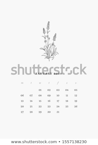 elegant 2020 calendar design template in line style Stock photo © SArts