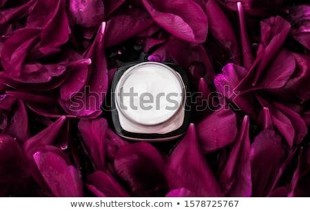 Gevoelig room bloemblaadjes Stockfoto © Anneleven