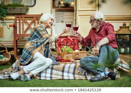 Senior grey-haired female toasting with glass of red wine in front of her family Stock photo © pressmaster