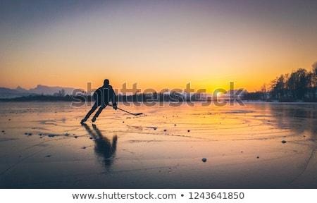 若い男 屋外 池 冬 日 ストックフォト © lightpoet