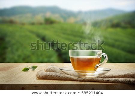 Warm beker thee pot vintage houten Stockfoto © grafvision