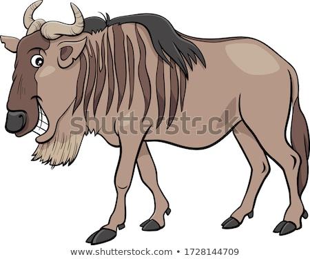 gnu antelope or blue wildebeest cartoon animal character Stock photo © izakowski