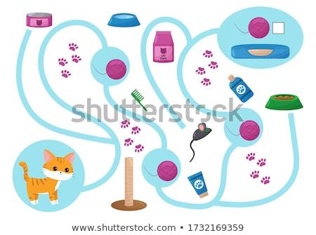 educational maze game with cartoon playful cats Stock photo © izakowski
