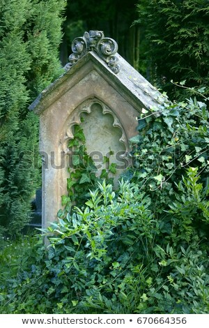Tombstone covered with flowers Stock photo © Elenarts