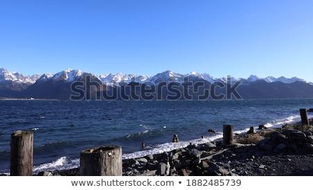 díszlet · part · feltámadás · Alaszka · kék · nyár - stock fotó © Klodien