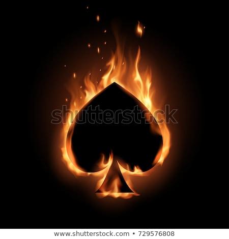 llama · establecer · diseno · elementos · negocios · fuego - foto stock © carodi