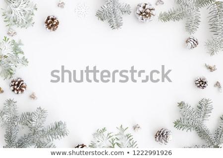 chrismas decorations and pine cones Stock photo © neirfy