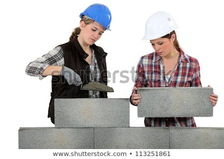 Rzemieślnik budynku ściany człowiek budowy pracy Zdjęcia stock © photography33