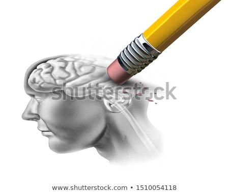 Emberi agy illusztráció fej háromdimenziós kördiagram orvosi Stock fotó © Lightsource