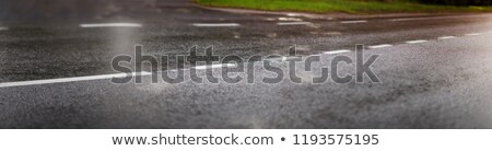 Asphalt & Dividing Line Stock photo © eldadcarin
