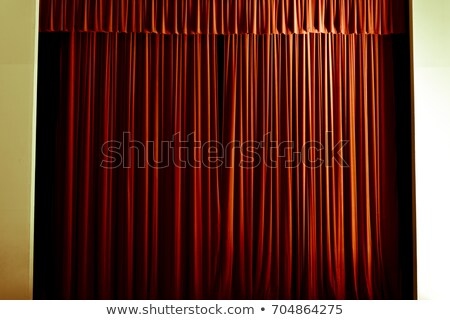 Stock photo: Lion with Curtain
