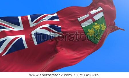 Ontario Flag Сток-фото © Myvector