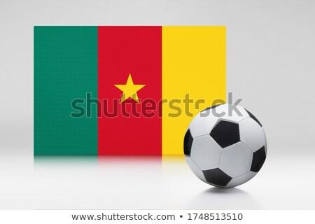 futebol · bandeira · Camarões · regular · verão - foto stock © mikhailmishchenko