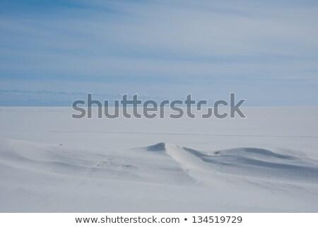 snowdrift and deep blue sky Stock photo © mycola