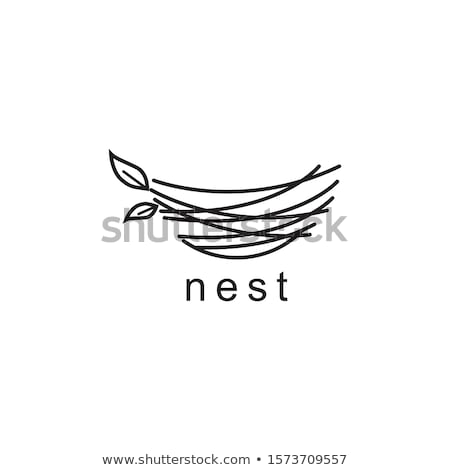 Stock foto: Vögel · Nest · isoliert · weiß · Gras · Natur