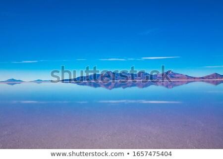 Flooded Salt Flats Reflection Stock photo © pancaketom