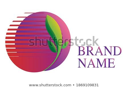 çevre dostu mor vektör ikon dizayn yaprak Stok fotoğraf © rizwanali3d