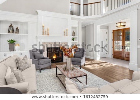 Front Door and Foyer of Luxury Home Stock photo © iofoto