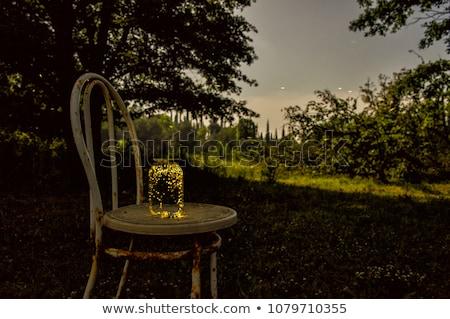 Bögre illusztráció természet éjszaka üveg vicces Stock fotó © adrenalina